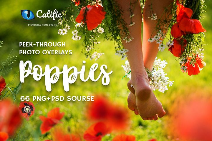 66 Poppie Flowers Photo Overlays