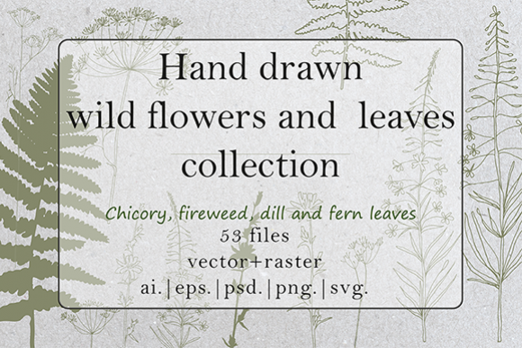 Hand drawn wild flowers and fern leaves