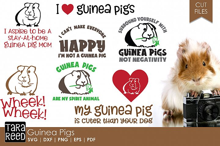 Guinea Pig SVG and Cut Files for Crafters