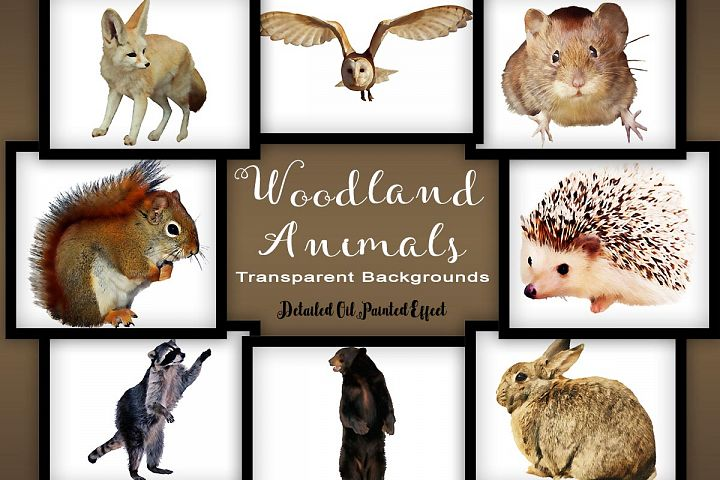 Woodland Animal Set V1