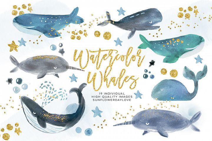 Whale Watercolour Clip Arts, Whale clipart