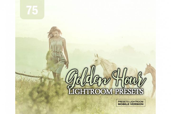 Golden Hour Effect Lightroom Mobile Presets Adroid and Iphon