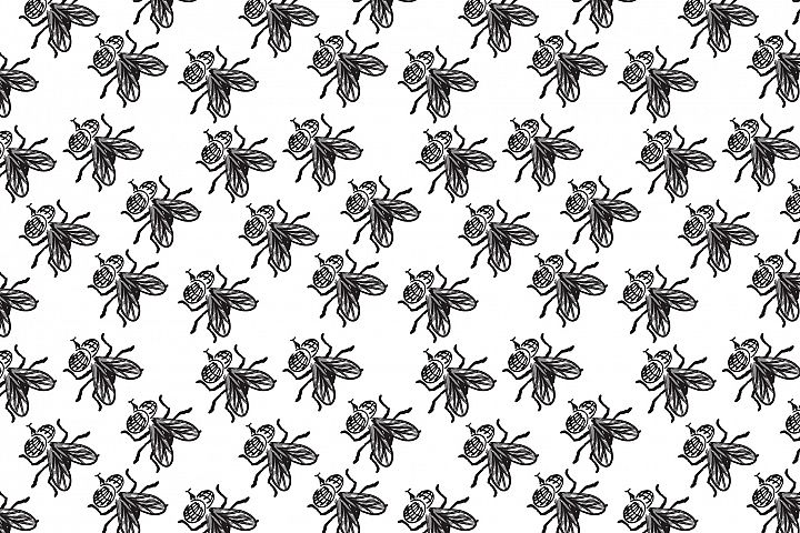 Seamless pattern with insect hand drawn flies.