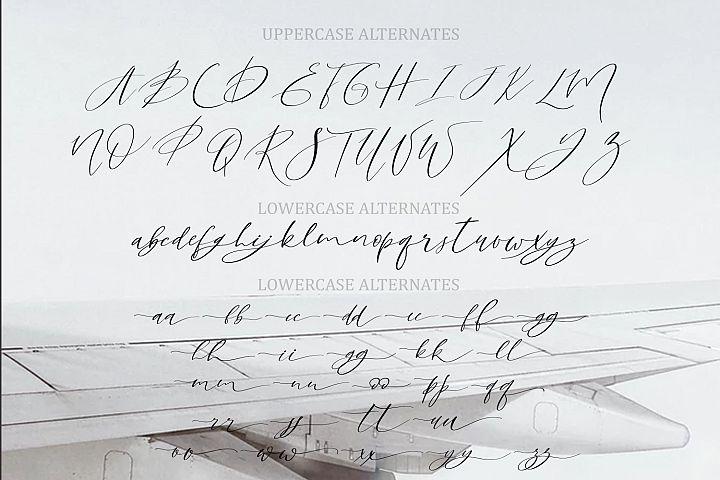Sky Opera. A Handwritten Script Font example image 12
