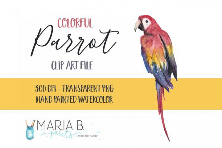 Colorful Parrot Watercolor Clip Art PNG
