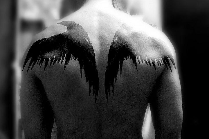 Black raven crow. Tattoo illustration.