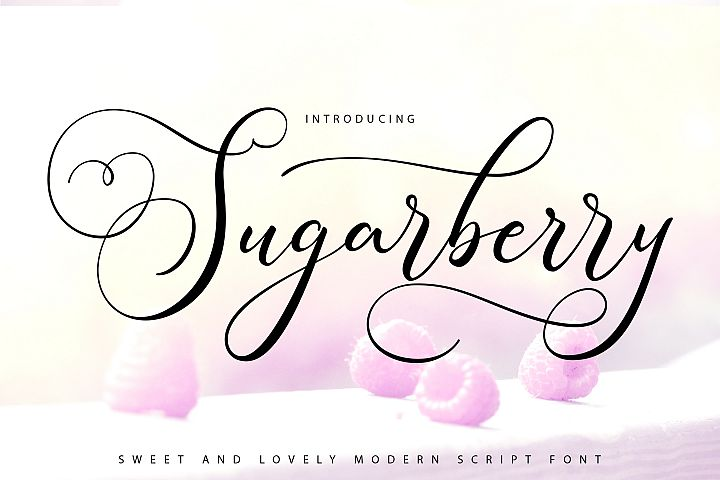 Sugarberry   Modern Script Font