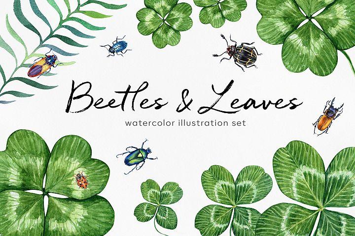 Beetles & Leaves. Watercolor set illustrations example image 1