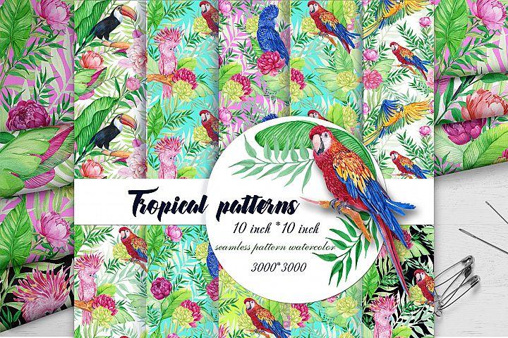Tropics. Seamless patterns .Parrots,COCKATOOS, MACAWS.TOUCAN