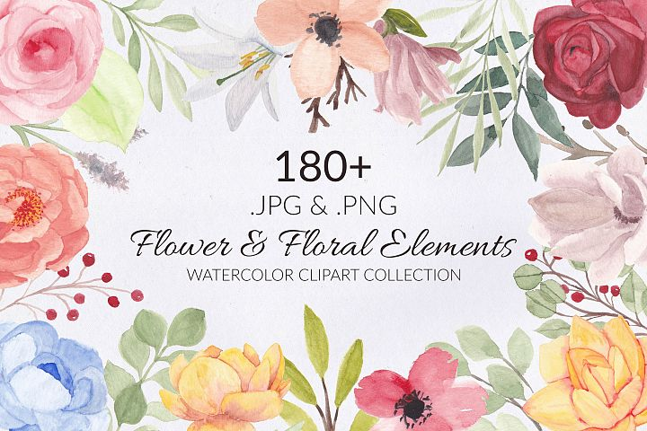 188 Flower and Floral Watercolor Illustration Clip Art