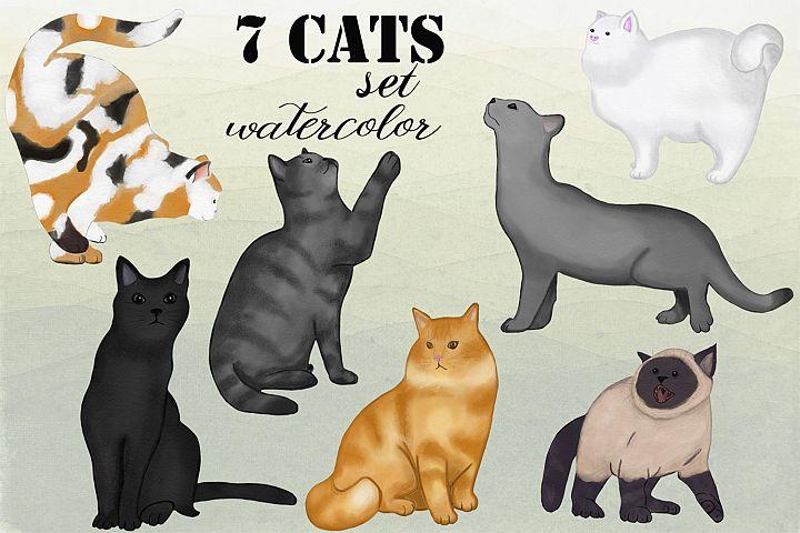 7 cats . watercolor set. hand drawn