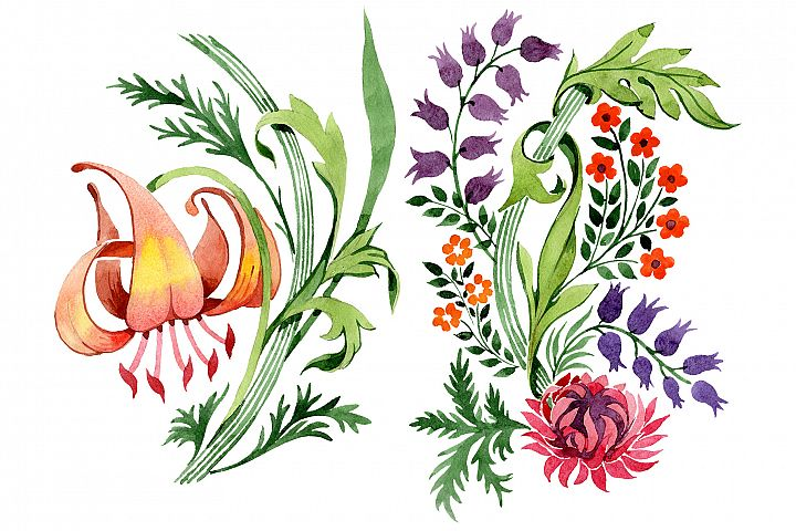 Floral ornament sunny watercolor png
