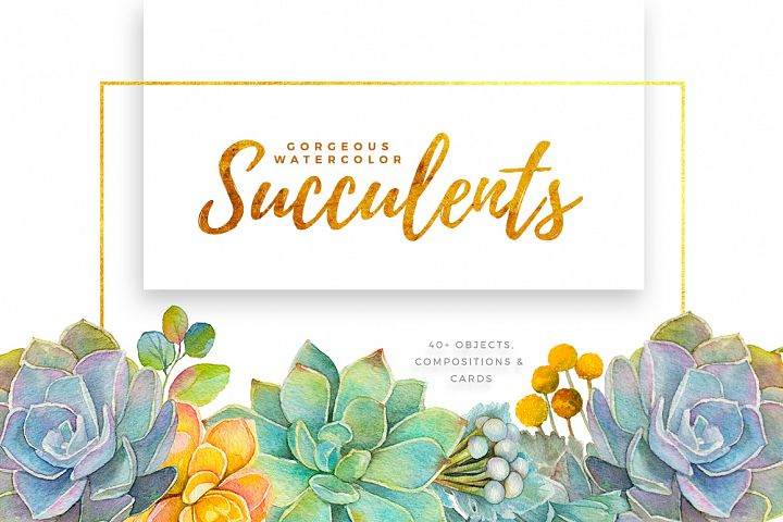 Gorgeous Watercolor Succulents