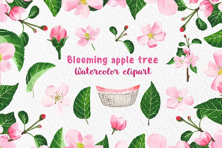 Blossoming apple tree Watercolor clipart Leaves and flowers