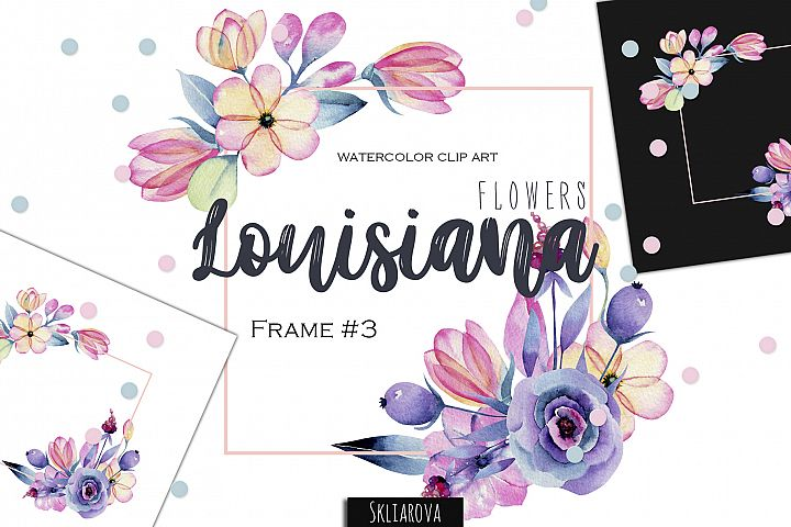 Louisiana flowers. Frame#3