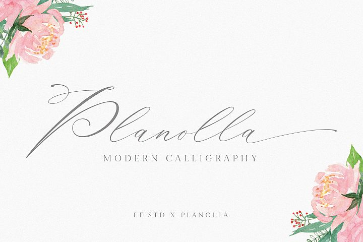 Planolla | Modern Calligraphy