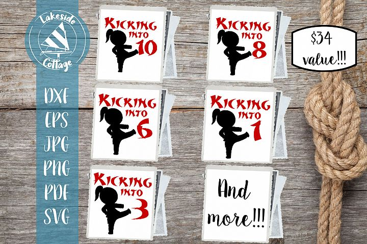 Kicking into Birthday Girl- Martial Arts Ages 1-10 SVG