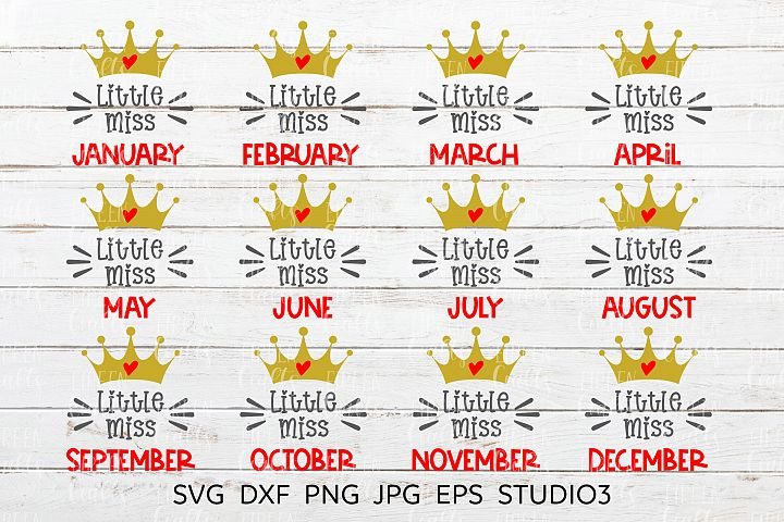 Little Miss January to Little Miss December SVG bundle