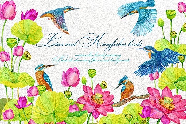 Kingfisher and Lotus flowers ClipArt