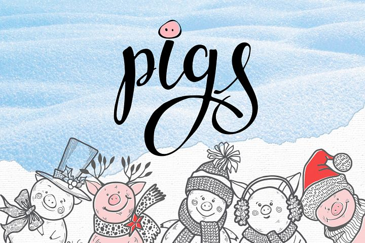 Winter pigs