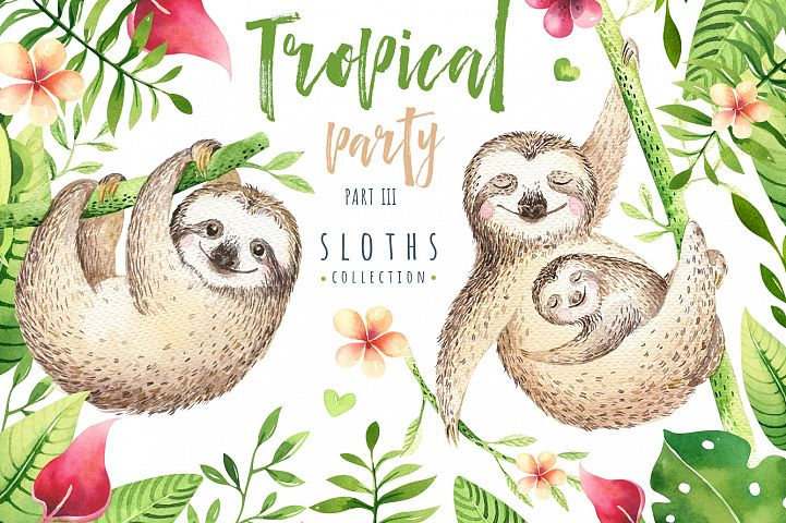 Tropical party III.Sloth collection