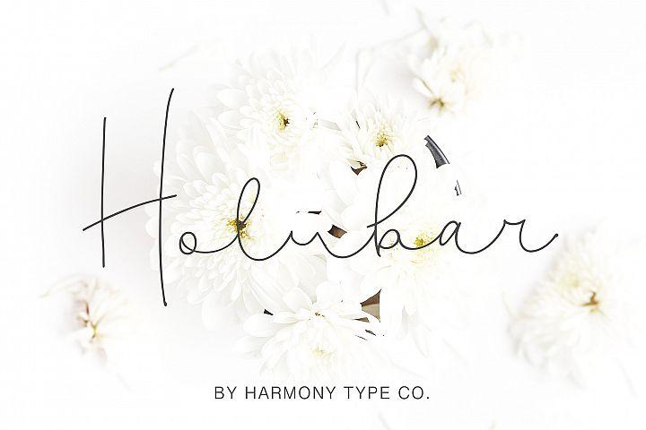 Holubar Script