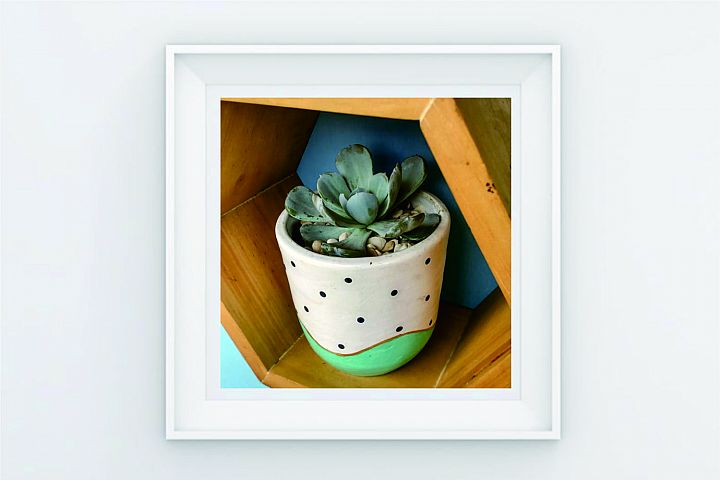 FRAME POSTER A CACTUS SECULENT STAND