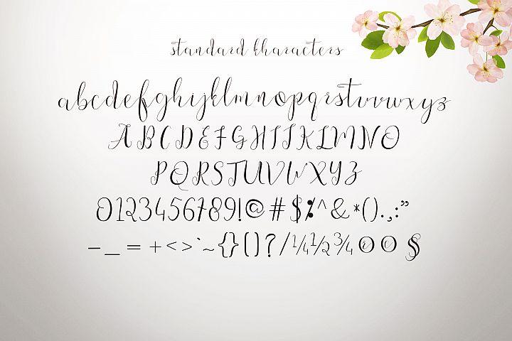 Fajrina Script example 1