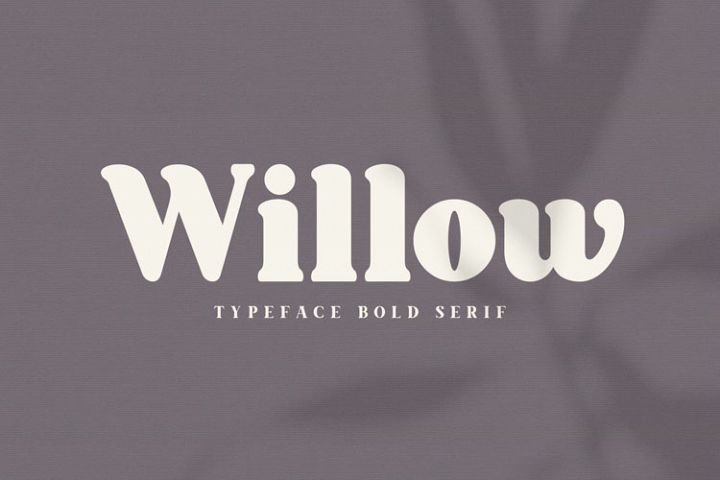 Willow. Typeface Bold Serif
