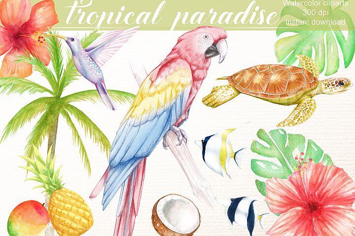 watercolor tropical clipart