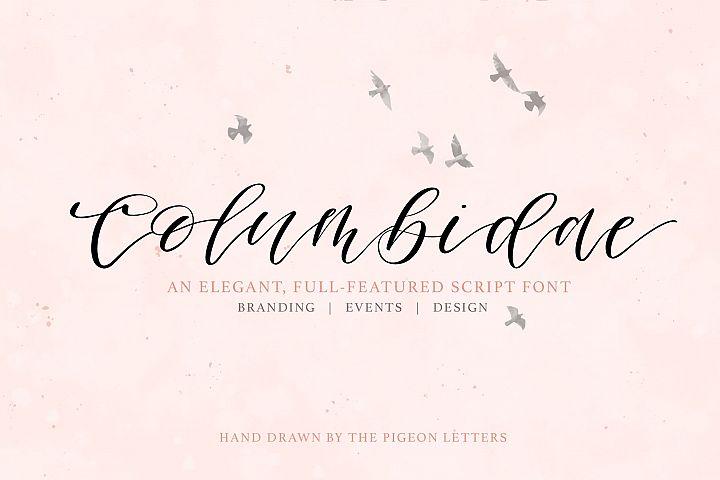 Columbidae Elegant Calligraphy Font