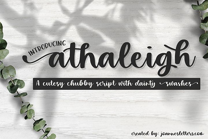 Athaleigh Script| A cutesy chubby script with dainty swashes