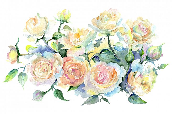 Bouquet or yellow roses Watercolor png