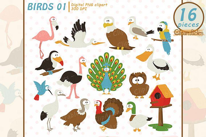 Cute BIRD clipart, Tropical bird clip art - INSTANT download