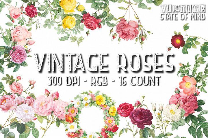 Vintage Rose Clipart Sublimation Graphics