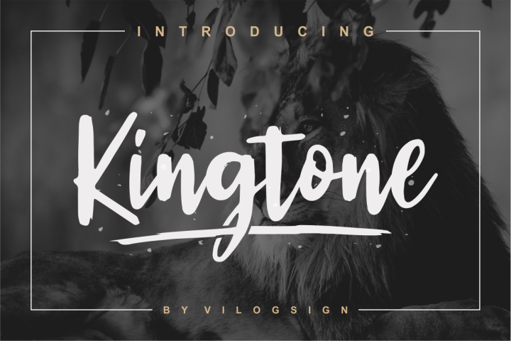 Kingtone // Handcrafted Script Font