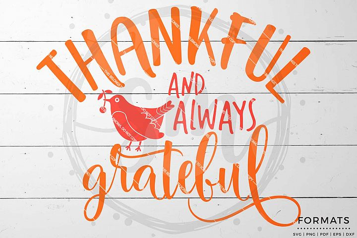 Thankful and Always Grateful svg - Thanksgiving svg