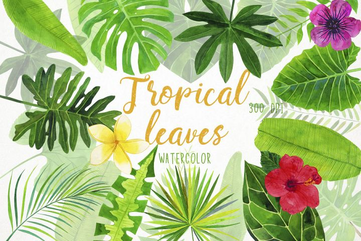Watercolor Tropical Leaves Clipart, Palm Leaves Clip Art