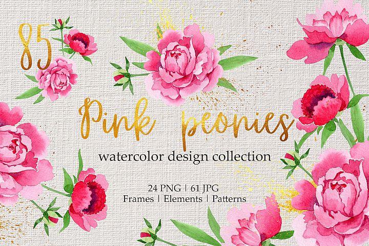 Legendary pink peonies Watercolor png
