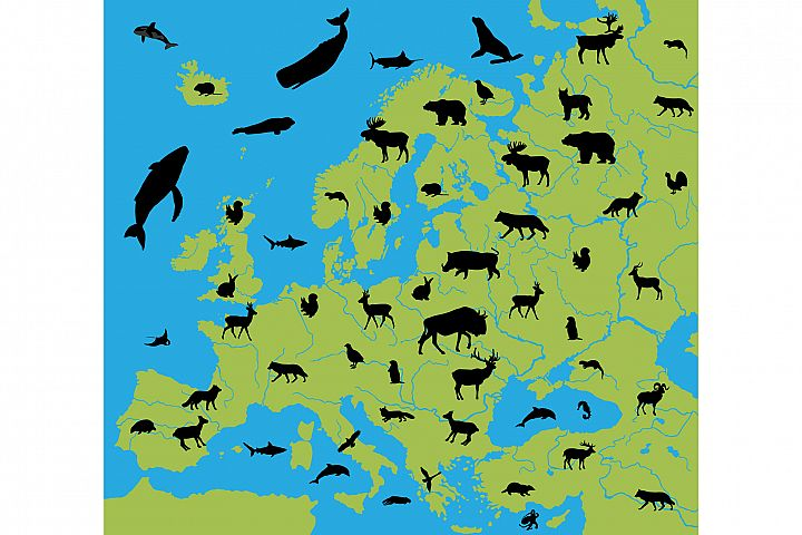Animals on the map of Europe
