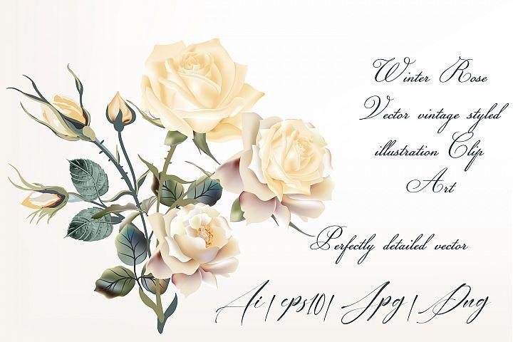 Beige rose vector high detailed clip art