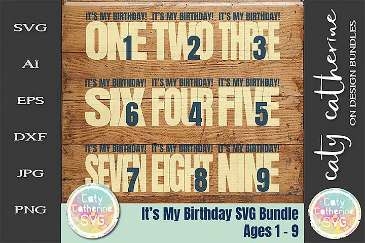 Its My Birthday Bundles Ages 1-9 SVG Cut File