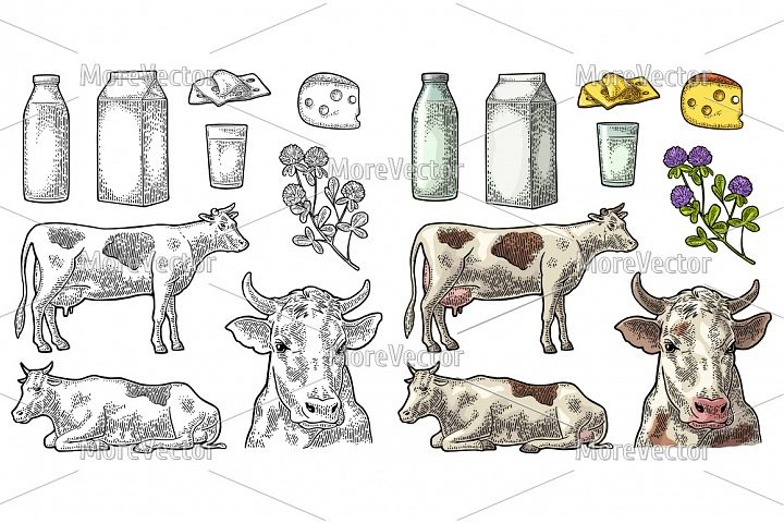 Set Milk farm. Cow cheese clover box glass engraving