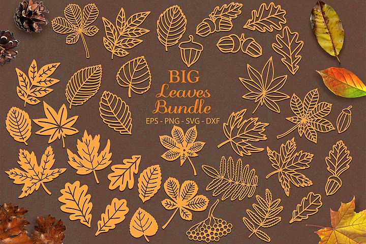 Autumn Leaves Big Bundle svg png dxf eps - Autumn Leaf