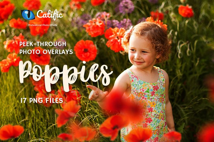 17 Poppie Flowers Photo Overlays
