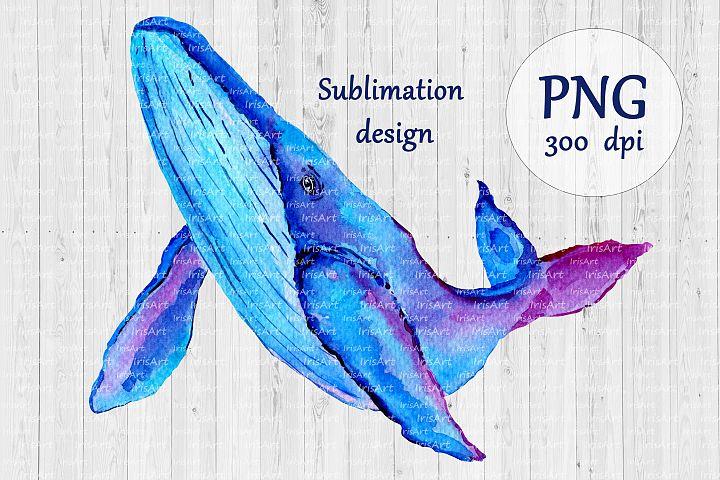 Watercolor Whale Sublimation Design PNG - Nautical Print
