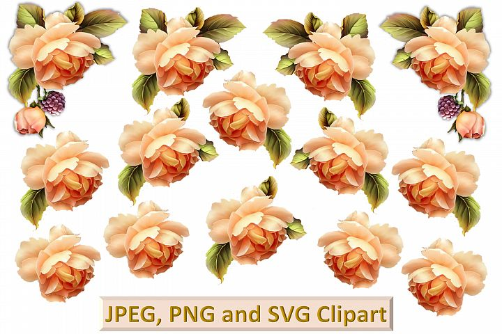 Peach Roses Clipart and printable kit PNG, SVG, JPEG CU