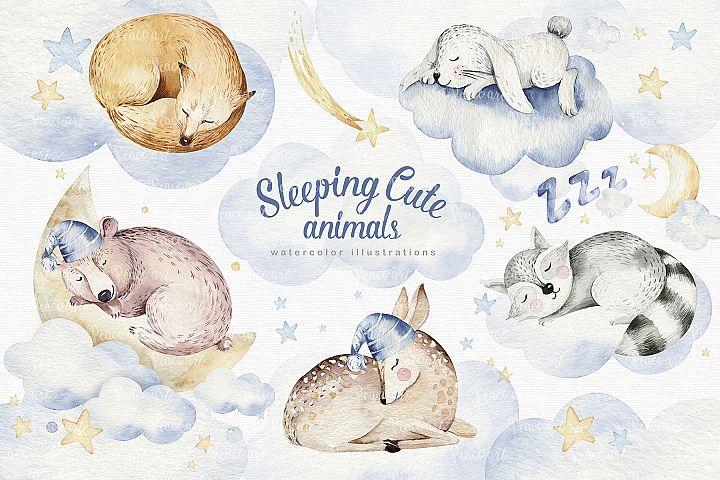 Sleeping cute animals