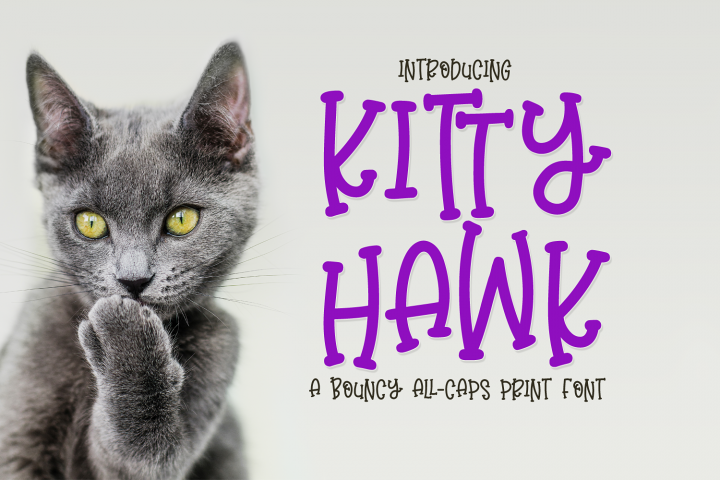 Kitty Hawk - a bouncy all-caps print