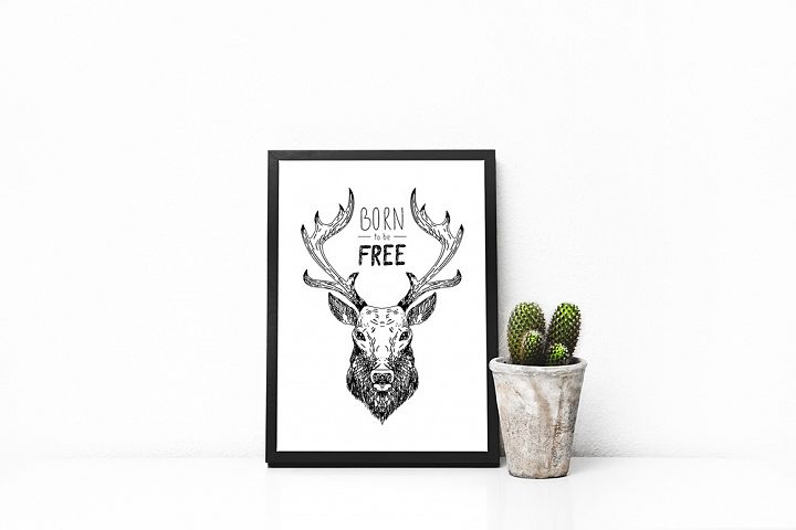 Wild Forest graphic pack - Free Design of The Week Design 4